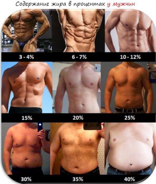 как измерить процент жира в организме мужчине