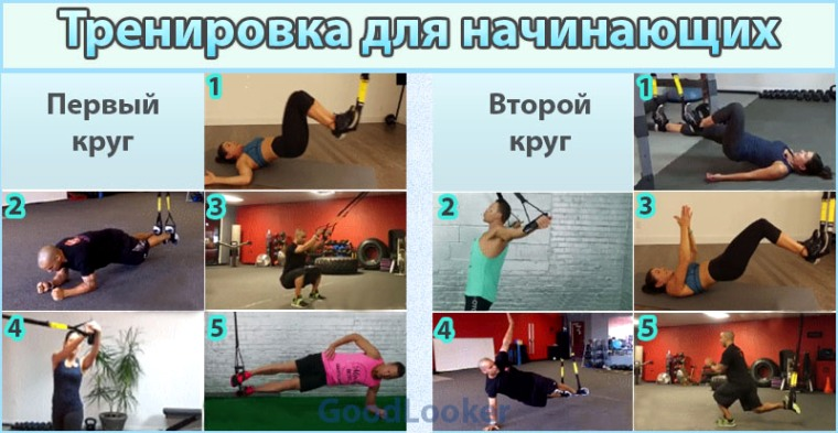 План упражнений с TRX для начинающих