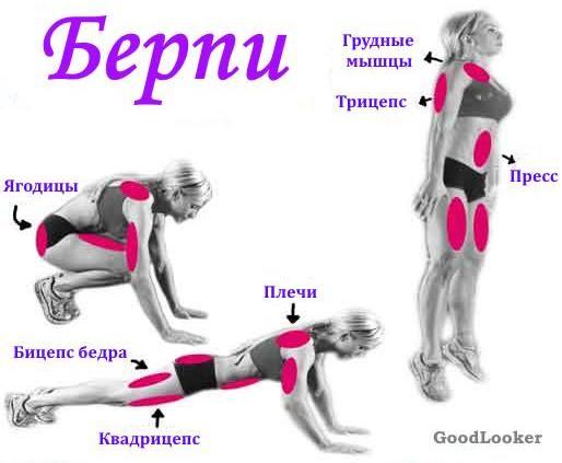 Мышцы во время берпи
