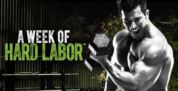 Описание программы A Week of Hard Labor от Саги Калева