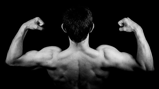 7 лучших упражнений на бицепс с гантелями