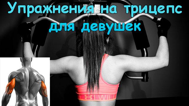 Топ-6 лучших упражнений на трицепс для девушек в домашних условиях и в зале