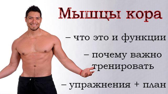 Мышцы кора: что это такое, основные функции, упражнения + план занятий