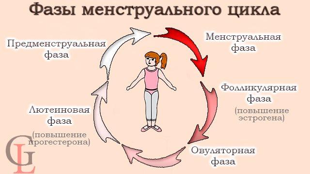 Тренировки во время менструации