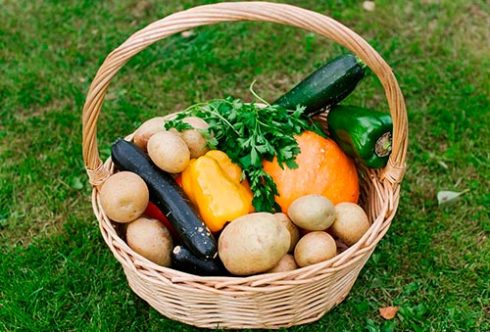 Топ-20 разнообразных ПП-рецептов из тыквы и кабачков