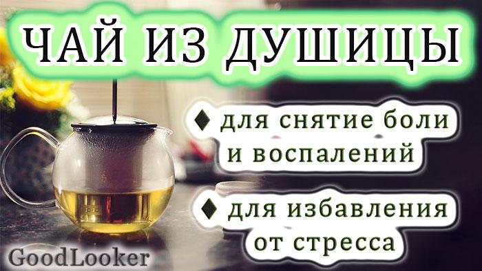 Чай из орегано (душицы)
